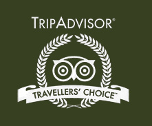 Tripadvisor top marked